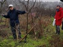 Pruning talk 10-02-18_06