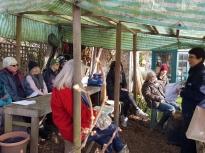 Pruning talk 16-02-18_03