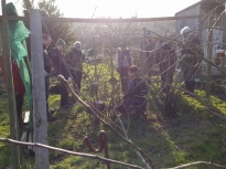 Pruning talk 16-02-18_10