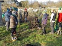 Pruning talk 16-02-18_11