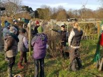 Pruning talk 16-02-18_18