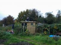 Toilet Refurb 2015 24