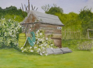 shed_watercolour