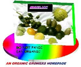 Don't Panic Eat Organic